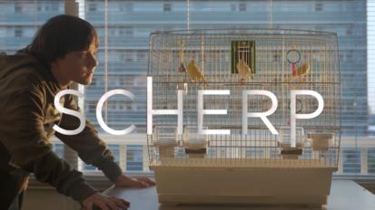 Short film – Scherp